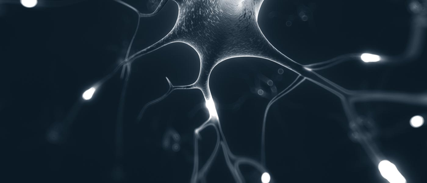 slide_neurons